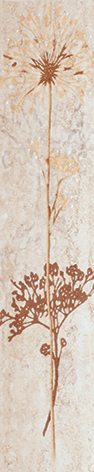 Верона 1 - 0737