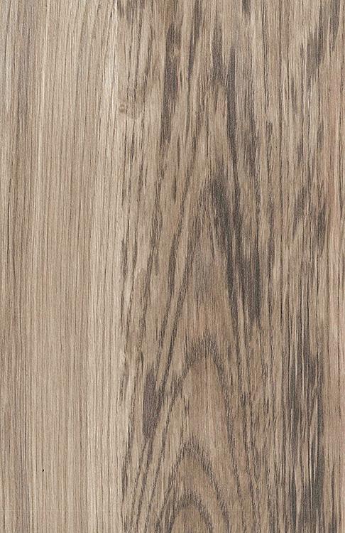 8267 - Abruzzo Pine