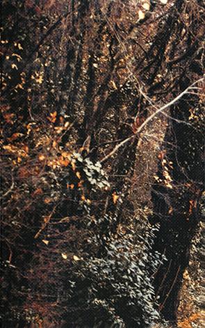 Готик Гора 1 - 5573