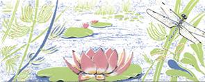 Лилии комфорт - 0250