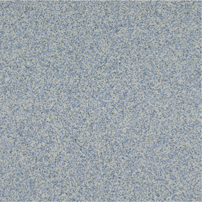 СП - 7805
