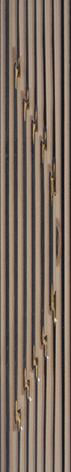 Сорел - 0284