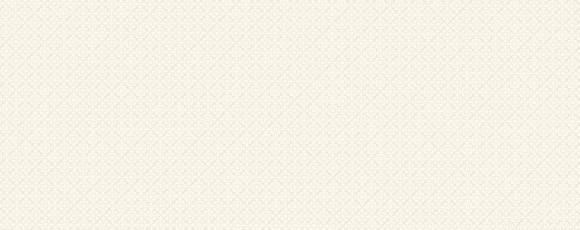 Фаянс Evora White 25x70