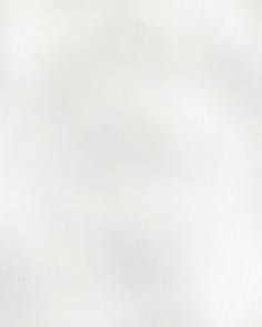 Уейви - 4330
