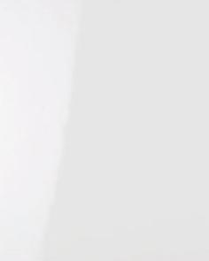 Бяла гланц - 4131