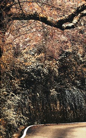 Готик Гора 2 - 5574
