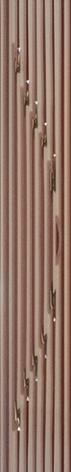Сорел - 0283