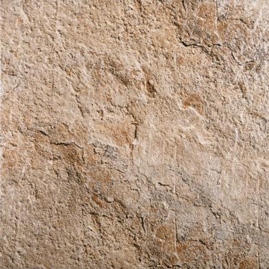 Сафари - 8589