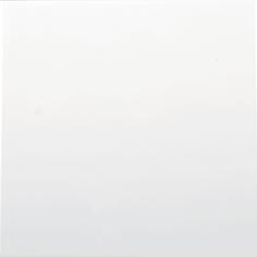 Бяла гланц - 1003