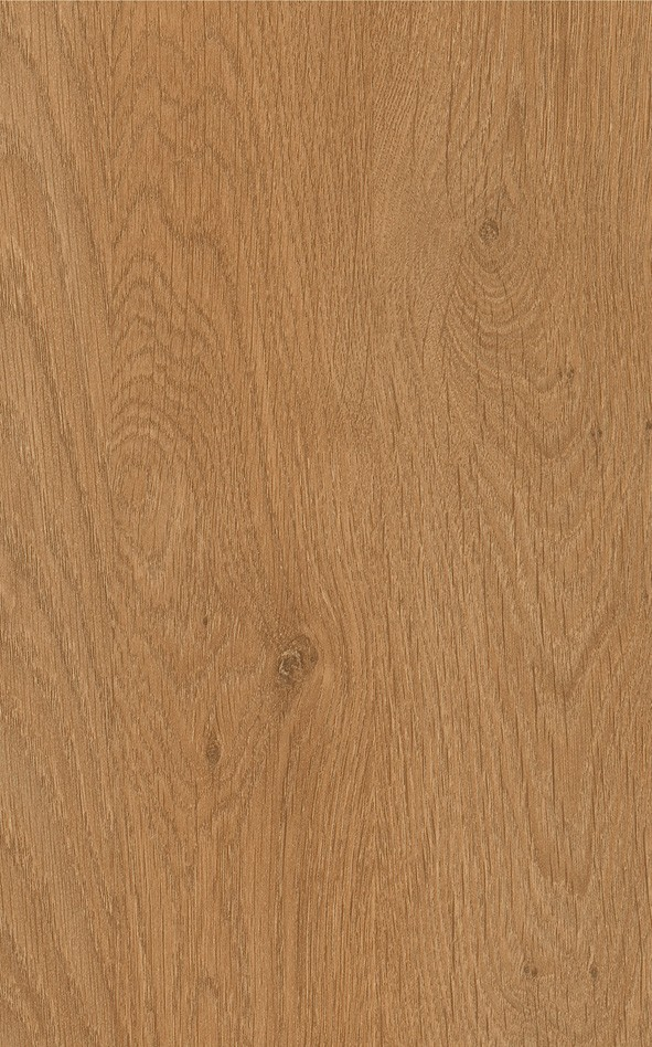 8725 - Aberdeen Oak